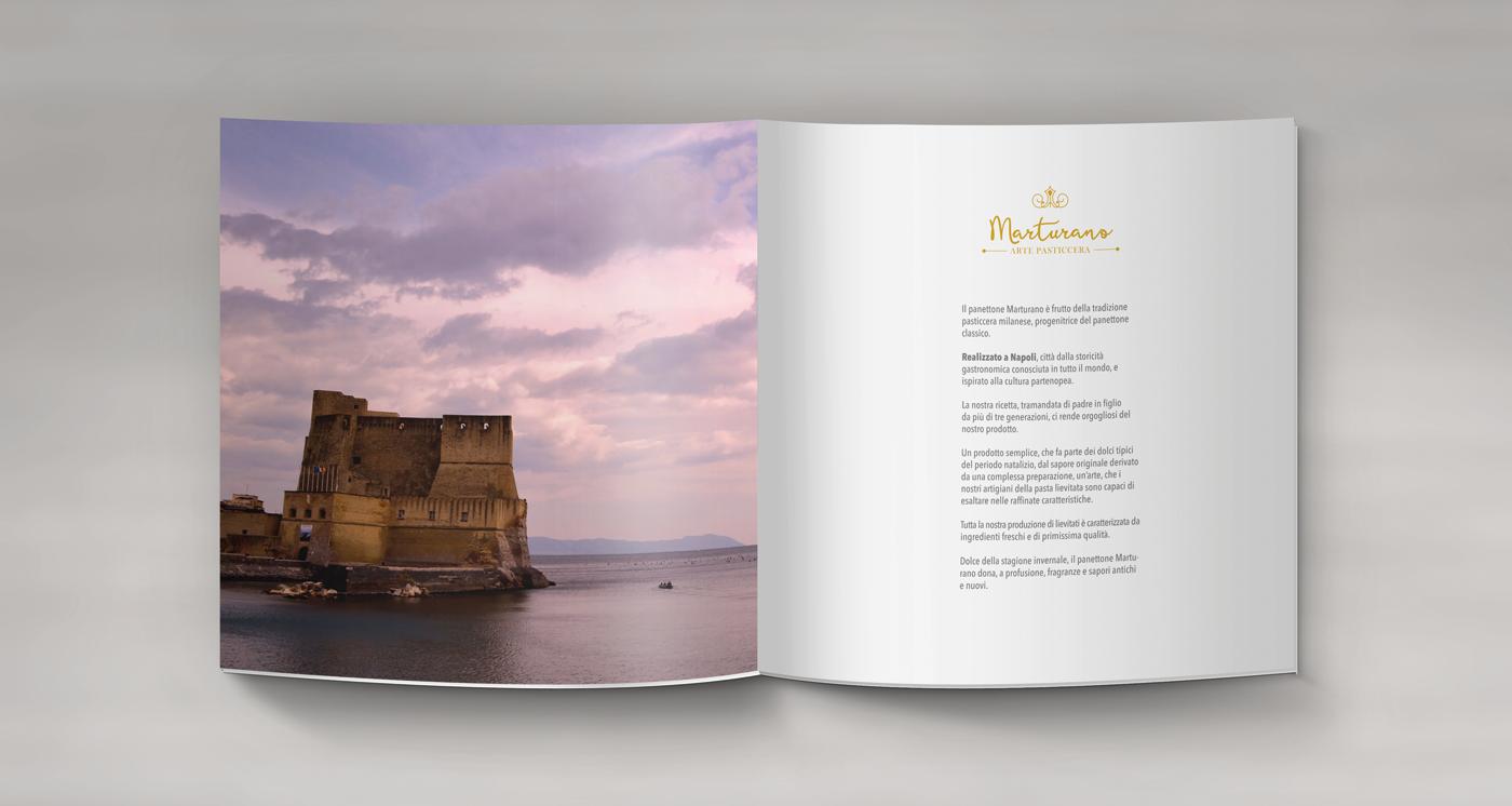 brochure-int1